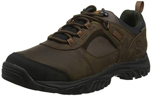 Timberland MT. Major Low Leather Gore-Tex, Zapatos de Cordones Oxford Hombre, Marrón MD Brown Full Grain, 41 EU