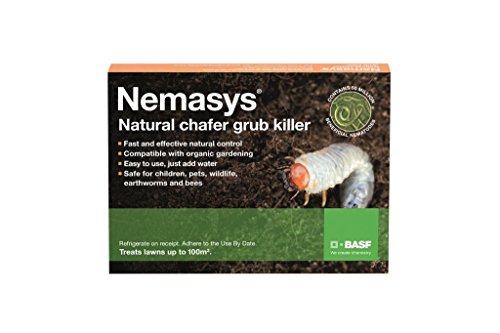 Nemasys Chafer Grub Killer