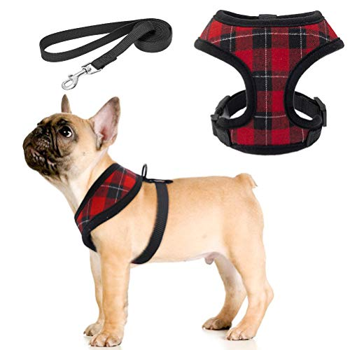 Dog Harness with Leash Set - No Pull Padded Vest Soft Mesh Puppy Harness and Leash for Small Medium Breeds Dogs & Cats