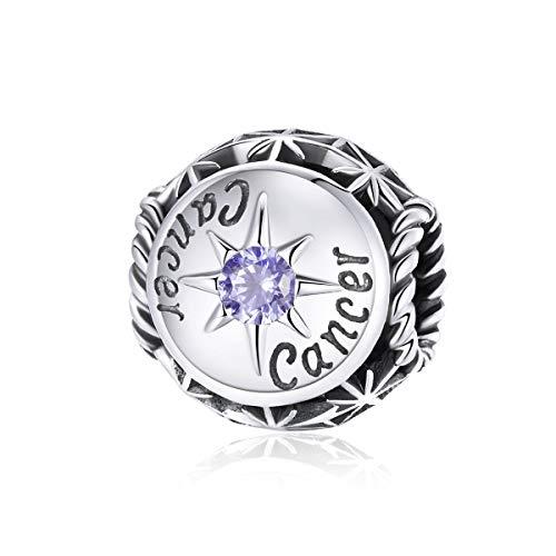 Abalorio de Piscis, compatible con pulseras Pandora y signo del zodiaco de plata, con 12 constelaciones de horóscopo – regalo de joyería para mujer con caja