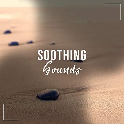 white noise meditation, The White Noise Zen & Meditation Sound Lab, Trouble Sleeping Music Universe