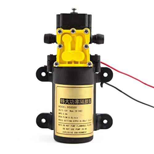 zrshygs 8 l/min Große Durchflussrate Landwirtschaftliche elektrische Wasserpumpe Wassersprühgerät Autowaschanlage