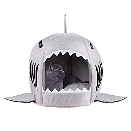 sharks decor for pets image