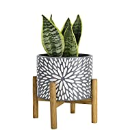 classic Daisy Pattern - Imitating the blooming daisies, this posh planter applies a retro floral motif with daisy petals scattered on its frost gray surface finished with matte glaze to convey innocence and purity, making it an ideal gift for your be...