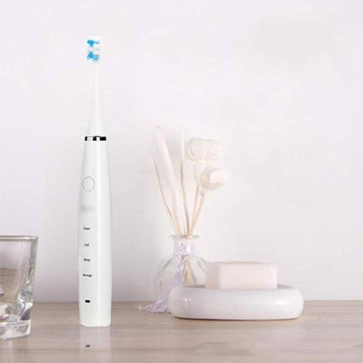 心理的に滝トリッキー電動歯ブラシ、USB充電式歯ブラシ旅行、2分タイマーで4つのブラッシングモード、防水IPX7,A