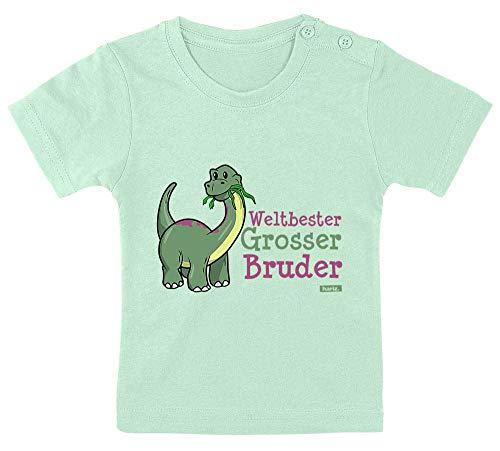 Hariz - Camiseta para bebé, diseño de dinosaurio divertido del mejor hermano del mundo con tarjetas de regalo, pasta de dientes verde, 9 – 15 meses 70 – 79 cm