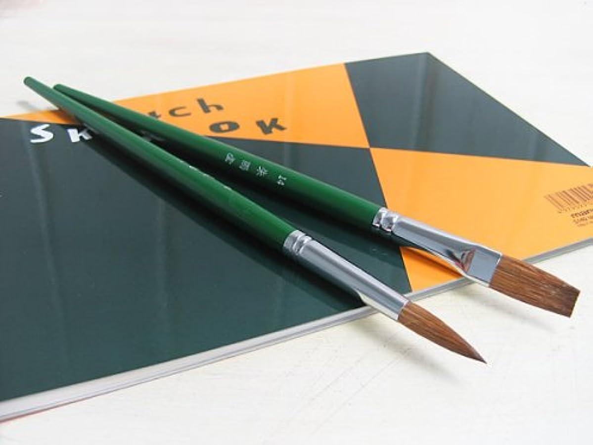 肥満団結する規制する水彩筆 / 高級 水彩画筆 14号 丸型 / 馬毛