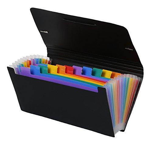 Viquel Rainbow Class - Trieur Accordéon de Bureau, Porte Document 12 Positions, Organisateur de Bureau Extensible, Trieur Format Chèque en Plastique, 26 x 13 cm