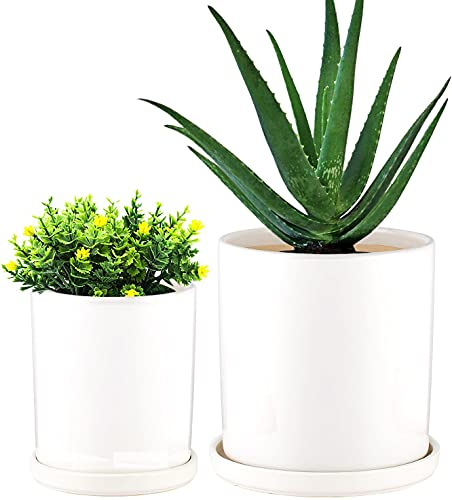 FloraSea 2 Pack White Ceramic Planter with Saucer,Ceramic Plant Pots with Drainage and Saucer,6.3 Inch and 4.8 Inch Cylinder Ceramic Planters with Connected Saucer,Ceramic Pots for Plants