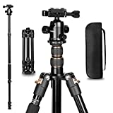 Camera Tripod 55 inch, GWNNSH Lightweight Aluminum Compact Tripod for DSLR SLR Canon Nikon Sony Cameras with 360° Panorama Ball Head,1/4 Quick Release Plate and Bag
