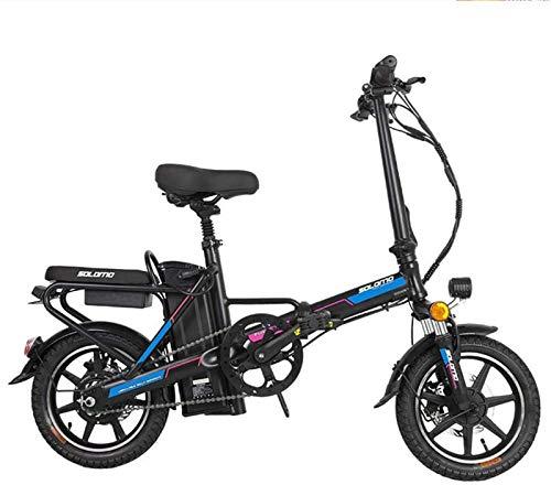 Bicicleta eléctrica de nieve, Bicicleta eléctrica for adultos, e Bicicletas plegables con gran capacidad extraíble de iones de litio (48V 350W 8Ah) 120 kg Capacidad de carga Batería de litio Playa Cru