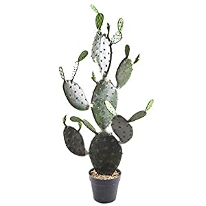 Silk Flower Arrangements SUWIN Artificial Cactus Tropical Succulent Potted Plant, Nordic Home Green Plant Decoration, Office Bonsai Ornament, 50X117cm