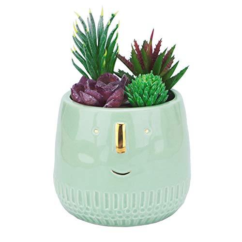 Kimdio Ceramic Flower Pots Succulent Planter Plant Pot Cute Face Flowerpot, Small Desk Plant Stand Lama Plants Holder for Indoor Outdoor Cactus Succulent Plant (Green)