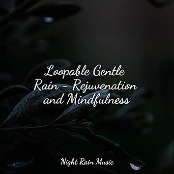 Loopable Gentle Rain - Rejuvenation and Mindfulness