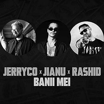 Banii Mei (feat. Jianu, Rashid)