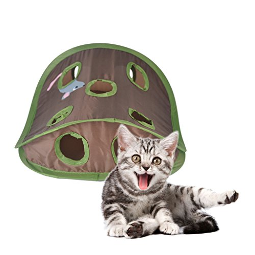 P Prettyia Juguete de de Gatos Juguete de Ratones Juego de Escondite Juego de Práctica de Rompecabezas Juguete