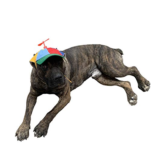 GEANBAYE Dog Hats with Funny Propeller, Size and Rope Double Adjustment Pet Hats for Small Middle and Large Dog (Iridescent)