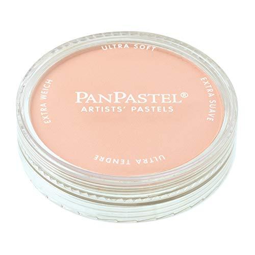 PanPastel - Peinture Pastel pour Artiste - 380.8 Red Iron Oxide Teinte