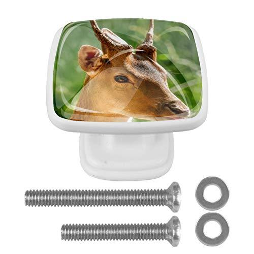 Möbelknopf Elchtier 4er-Pack Set von Dekorative Schubladengriffe Griffe Tür für Schränke, Schubladen, Truhen usw Schubladenknopf quadratisch weiß