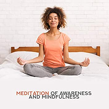 Meditation of Awareness and Mindfulness