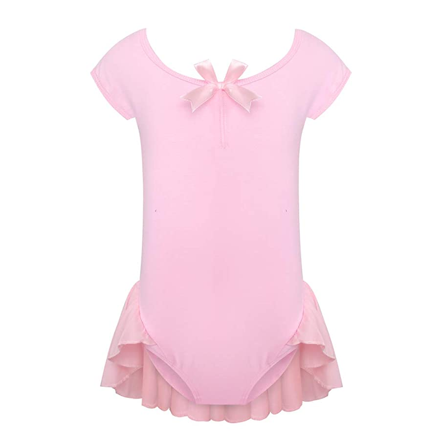 Ac.y.c Toddle Little Girls' Raglan Cap Sleeve Leotard Ballet dress for Gymnastics Activewear Dance Dresses (110cm/2-4Y, Pink)