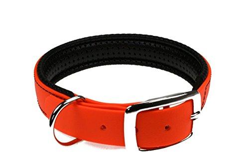 LENNIE BioThane Halsband, gepolstert, Dornschnalle, 25 mm breit, Größe 44-52 cm, Neon-Orange, Aufdruck möglich