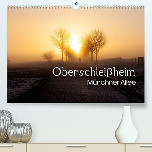 Oberschleißheim - Münchner Allee (Premium, hochwertiger DIN A2 Wandkalender 2021, Kunstdruck in Hochglanz)