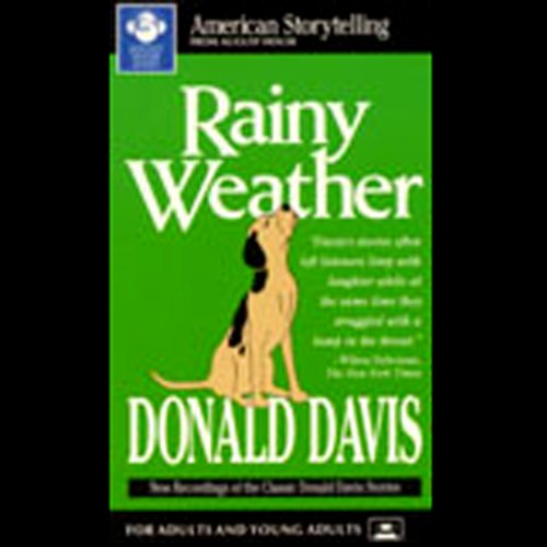 Rainy Weather audiobook cover art