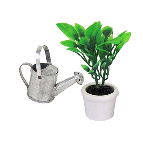 TOOGOO Maison de Poupee Miniature Arrosoir Gruene Accessoires de Plantes et Jardin Bec Boite en Metal