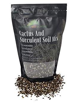 Succulent & Cactus Soil Mix - Premium Pre-Mixed Fast Draining Blend  1.25 Dry Quarts
