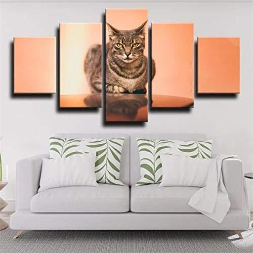 QQWW 5 Panel Wall Art Animal Gato Reflejo Naranja Pintando la impresión de la Pintura en Lienzo Seascape Pictures para la decoración de casa Regalo de decoración