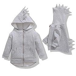 3. Oeillet d'ne Dinosaur Toddler Hoodie