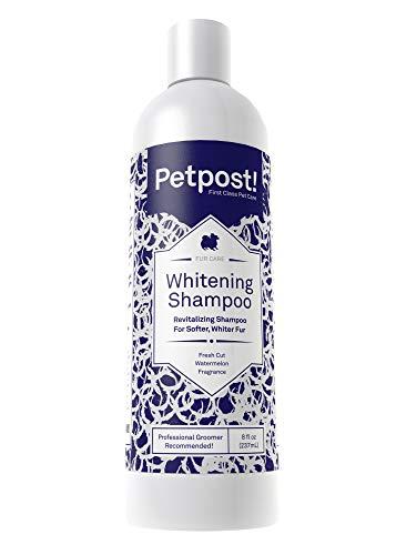 Petpost | Aufhellendes Schampoo für Hunde - Die Beste Behandlung für Hunde mit weißem Fell - Hundeshampoo mit Beruhigendem Wassermelonen-Geruch - 237 ml.