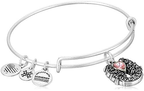 Alex and Ani Fortune's Favor Rafaelian Silver Bangle Bracelet