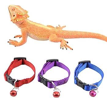Best bearded dragon collar Reviews