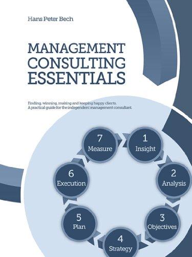 Management Consulting Essentials (English Edition)