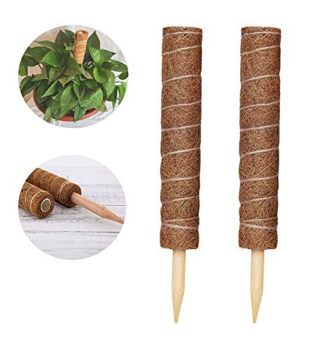 LINSOCLE 2 Stück Pflanzstab Kokos, Natürlicher Kokosstab, Verlängerbar Coir Moss Stick Coir Moss Totem Pole für Pflanzenunterstützung Klettern Zimmerpflanzen Creepers.