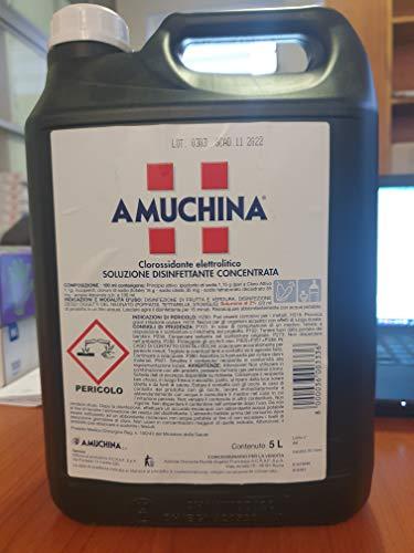 AmuchinaSoluzione Disinfettante Concentrata, Tanica 5 Lt