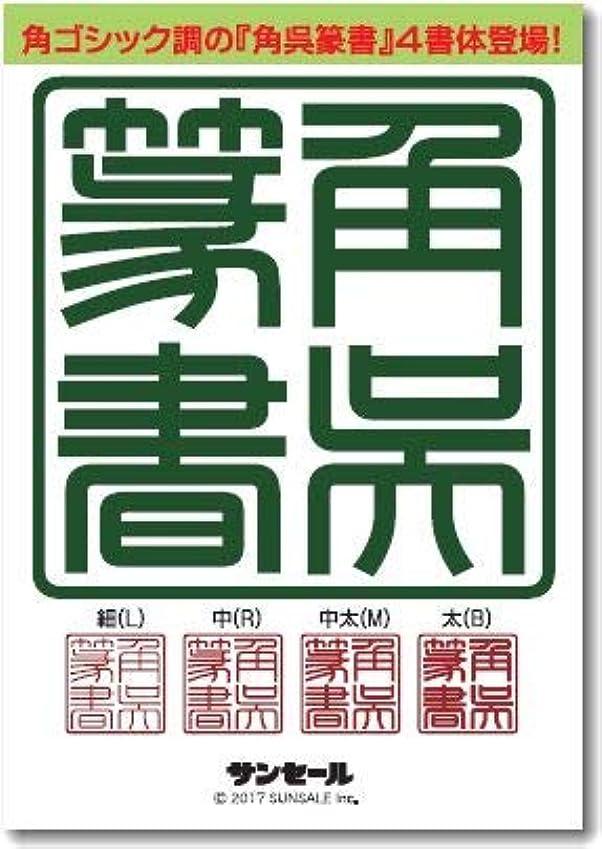 散逸比喩アルファベット角呉篆書ファミリー(4書体) 細(L),中(R),中太(M),太(B)TrueType Hybrid | PC/Mac
