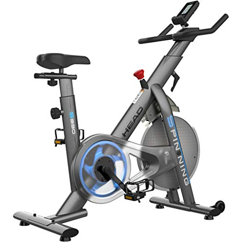 Hometrainers Kettler hometrainers fietstrainer christopeit ergometer Home Spinning Fiets Stille Fitnessapparatuur Voor Binnen Verstelbare 7.5KG Vliegwielstepper ( Color : Gray , Size : 118*47*109cm )