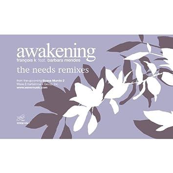 Awakening (feat. Barbara Mendes) [Needs Remixes]