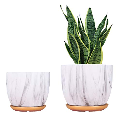 Ceramic Plant Pot 8  7 inch Flower Modern Planter Indoor Gardening containers Pack 2 with Drainage Hole and Saucer White Marble