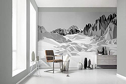 Komar Hochwertige Papier Fototapete Icefields, Größe 368 x 254 cm (Breite x Höhe), 8 Teile, inklusive Kleister, Made in Germany, Schwarz, Weiß, 8-208