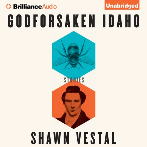 Godforsaken Idaho audiobook cover art