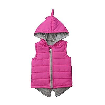 Toddler Baby Boy Girl Coat 3D Dinosaur Winter L...