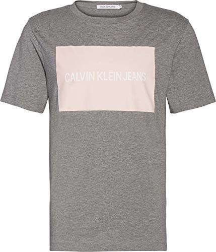 Calvin Klein Institutional Box Logo Reg tee Camiseta, Gris Brezo/Fresa, S/Alto para...
