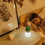 peebok Humidificador de Cactus de luz Nocturna atmosférica Humidificador USB de Escritorio Mini Cactus