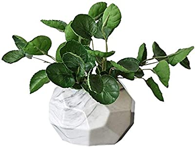 Decorative Artificial Outdoor Ball Plant Tree Pot Colour Small Medium Large JSF0