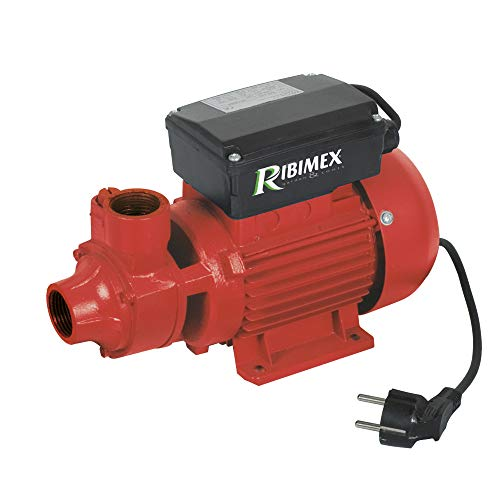 Ribimex PRPC115 - Bomba de gasóleo, 30 l/min, 370 W