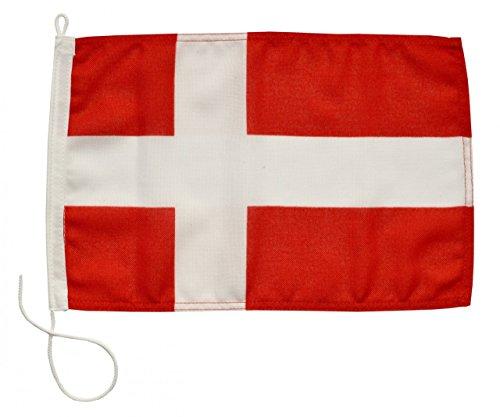 Navyline Gastlandflagge Dänemark in 4 Größen, Größe:20 x 30 cm